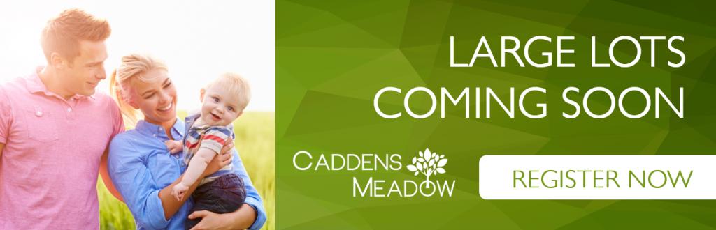 2015-JUL-17-Caddens-Meadow-Land-Coming-Soon
